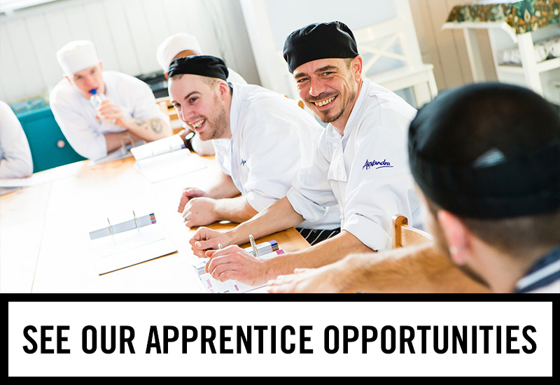 Apprenticeships at The White Rose